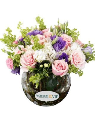 Rosas Excelsas