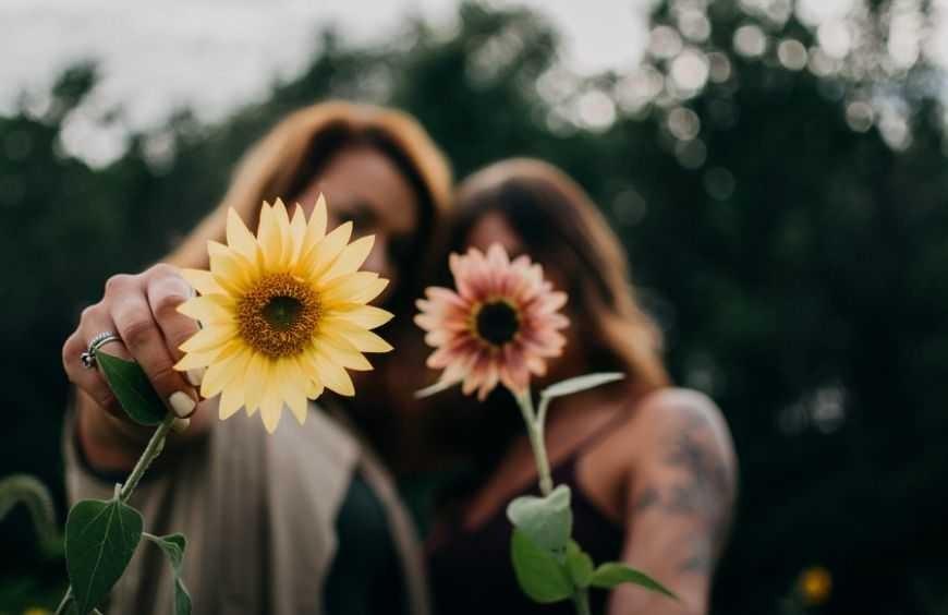 ¿Cuáles son las mejores flores para regalar a una amiga?